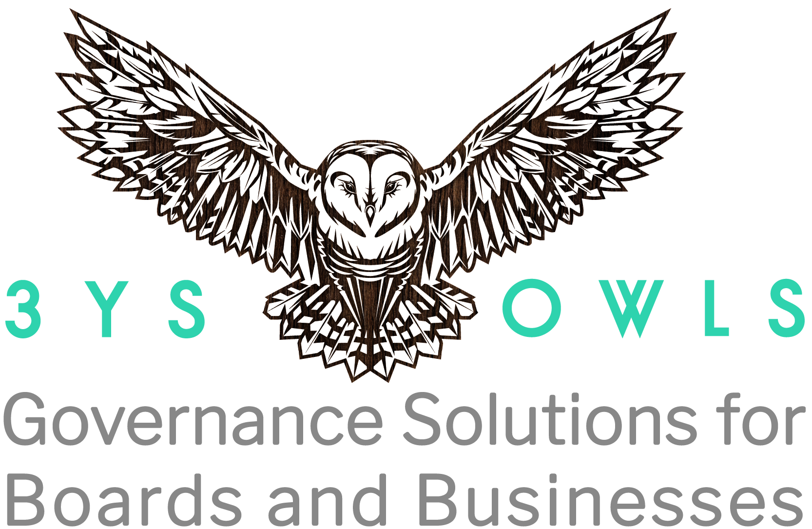 3YS Owls Corporate Governance Company Secretary